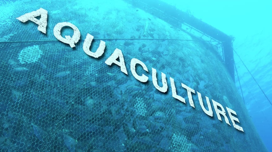 INTRODUCTION TO AQUACULTURE AND FISHERY ARTS